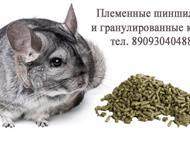 Корма для шиншилл Всегда в продаже специальные гранулированные корма для шиншилл от нашей Шиншилловой Фермы CHINCHIL. RU Кормовая база с необходимым к, Ижевск - Корм для животных